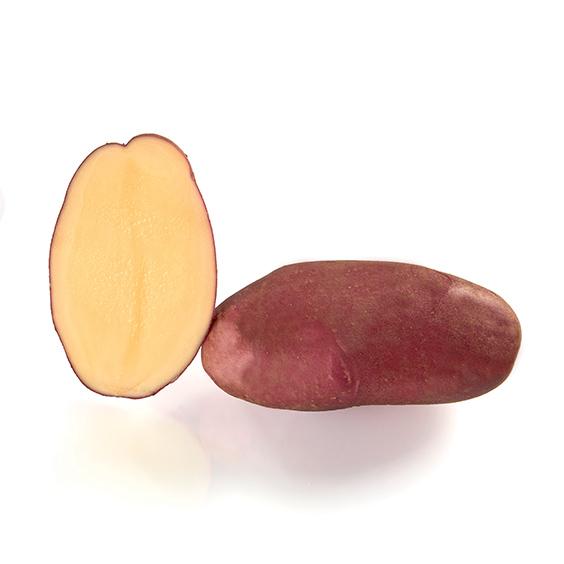 фото сорта картофеля Розанна