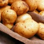 фото картошки Сафо