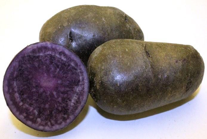 фото сорта картофеля северное сияние