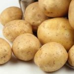 фото картофеля Солнышко