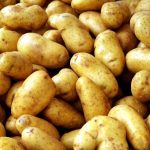 фото картошки Стемлук