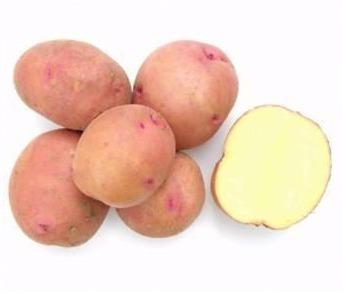 фото сорта картофеля соточка
