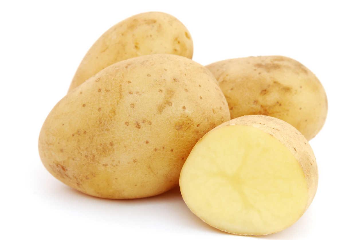 фото сорта картофеля Спарта