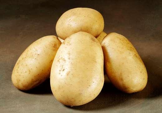 фото сорта картофеля Фолва