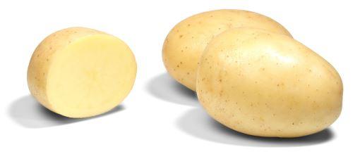 фото сорта картофеля турбо