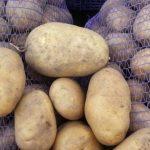 фото картошки вираж
