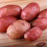 фото картошки Якутянка