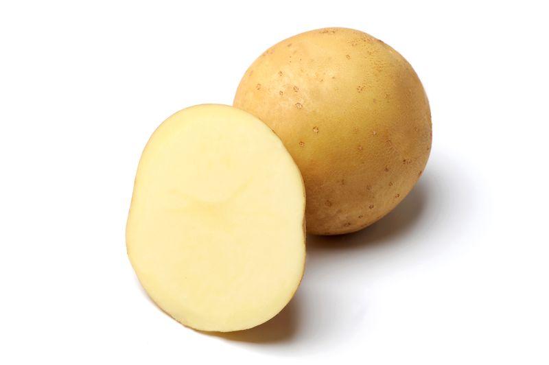 фото сорта картофеля Бирский
