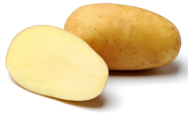 фото сорта картофеля Доната