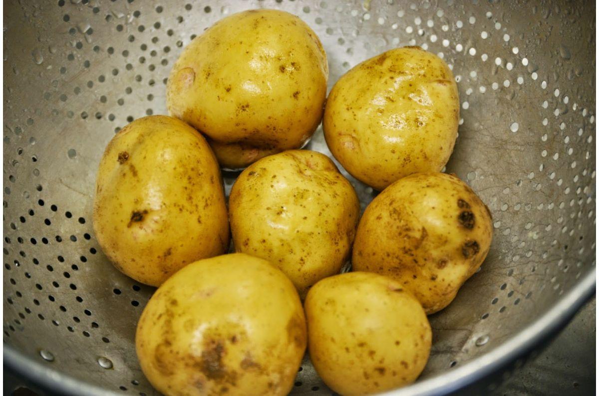 фото сорта картофеля Вираж