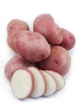 фото сорта картофеля Якутянка